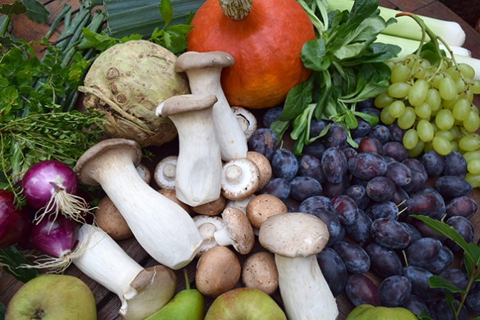 Herbstgemüse Kürbis Pilze Weintrauben Feldsalat