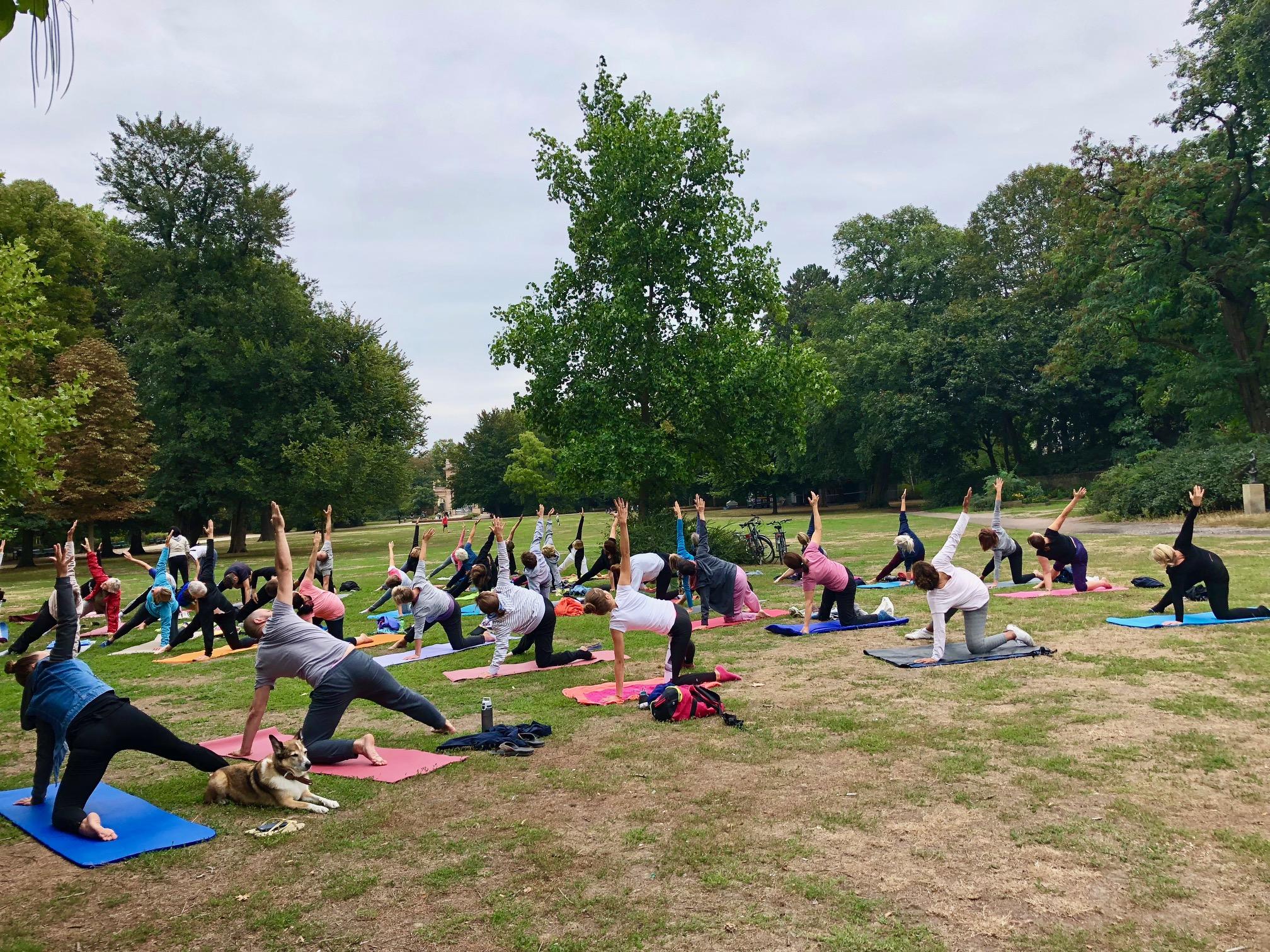 Yoga im Park