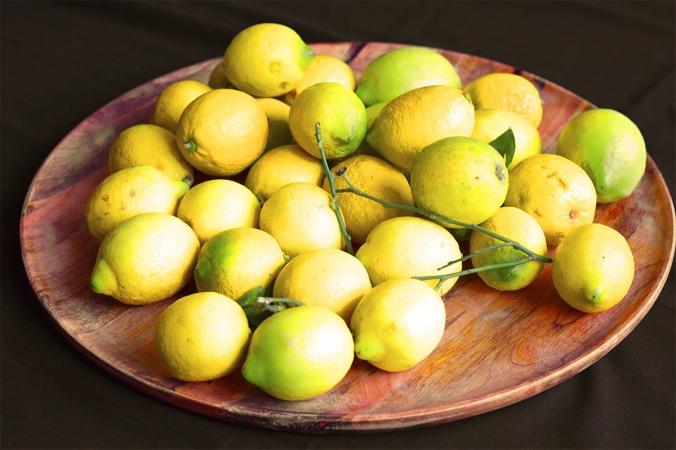 Frische Zitronen aus Sizilien